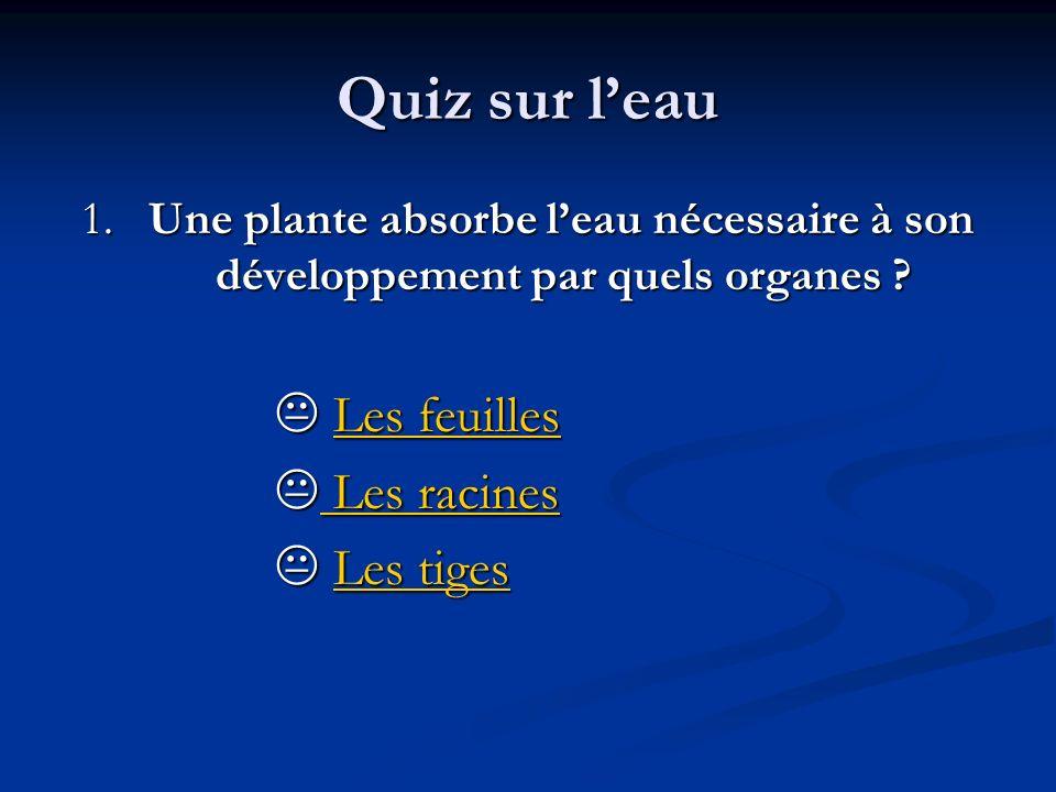 Quiz sur leau 1. Une plante absorbe leau nécessaire à son développement par quels organes ? Les feuilles Les feuillesLes feuillesLes feuilles Les raci