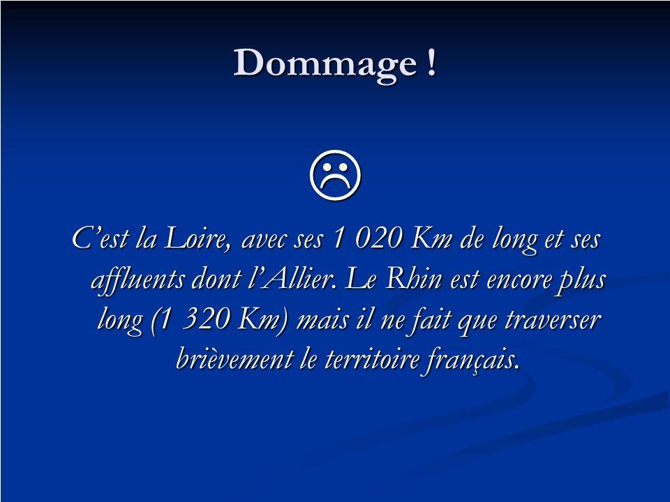 Dommage ! Cest la Loire, avec ses 1 020 Km de long et ses affluents dont lAllier. Le Rhin est encore plus long (1 320 Km) mais il ne fait que traverse
