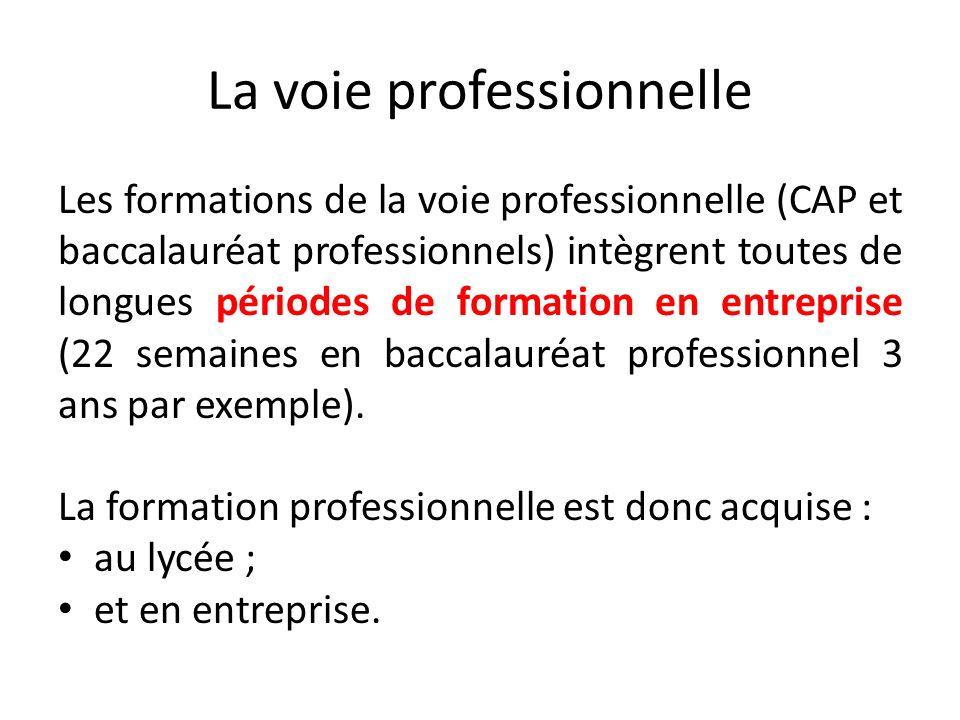La voie professionnelle Les formations de la voie professionnelle (CAP et baccalauréat professionnels) intègrent toutes de longues périodes de formati