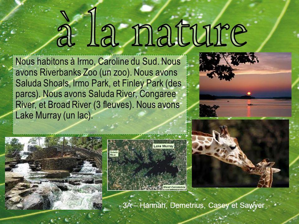 Nous habitons à Irmo, Caroline du Sud. Nous avons Riverbanks Zoo (un zoo).