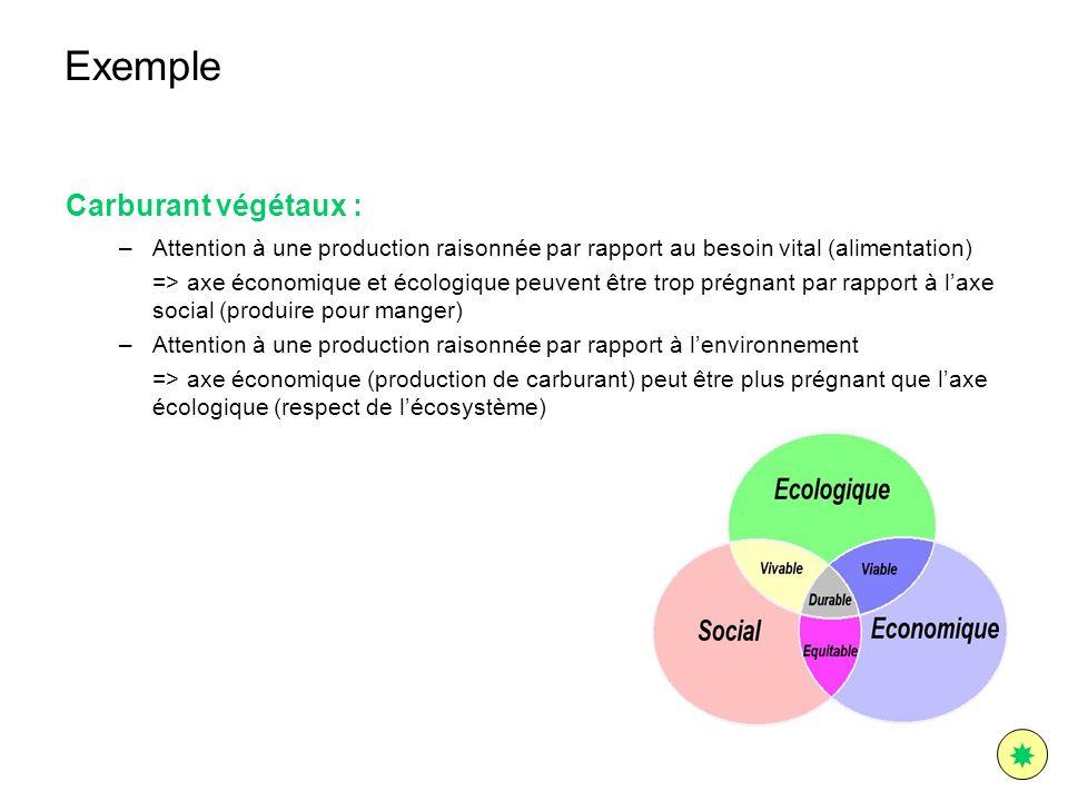 Exemple Carburant végétaux : –Attention à une production raisonnée par rapport au besoin vital (alimentation) => axe économique et écologique peuvent