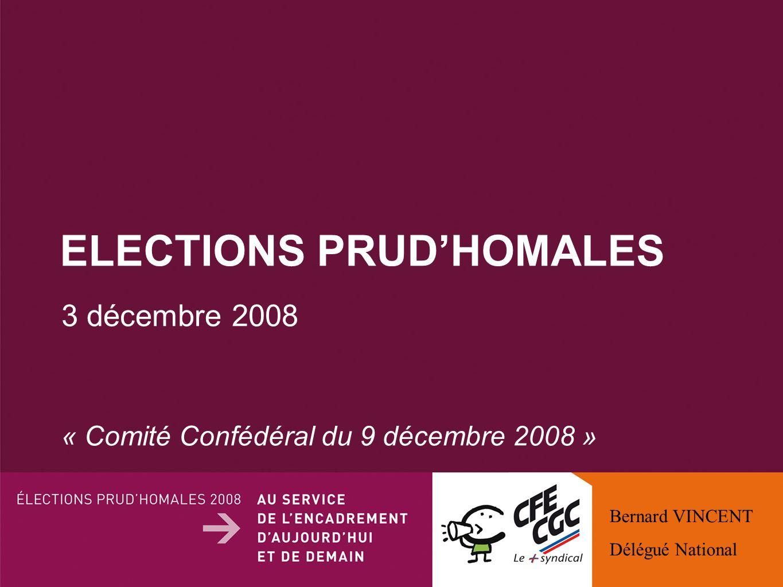 ELECTIONS PRUDHOMALES 3 décembre 2008 « Comité Confédéral du 9 décembre 2008 » Bernard VINCENT Délégué National