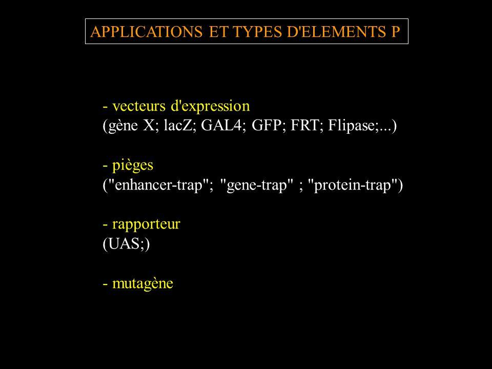 APPLICATIONS ET TYPES D'ELEMENTS P - vecteurs d'expression (gène X; lacZ; GAL4; GFP; FRT; Flipase;...) - pièges (