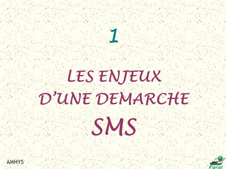 AMHYS 1 LES ENJEUX DUNE DEMARCHE SMS