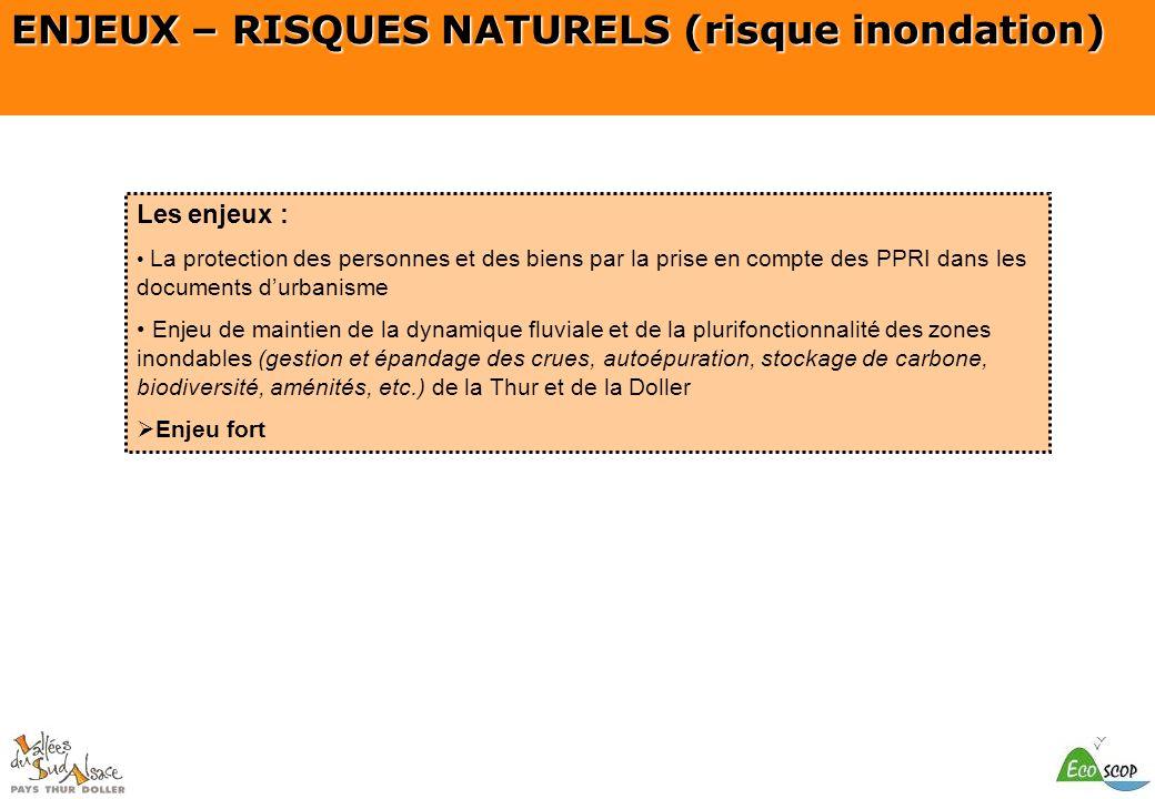 SCOT du Pays Thur Doller ENJEUX – RISQUES NATURELS (risque inondation) Les enjeux : La protection des personnes et des biens par la prise en compte de