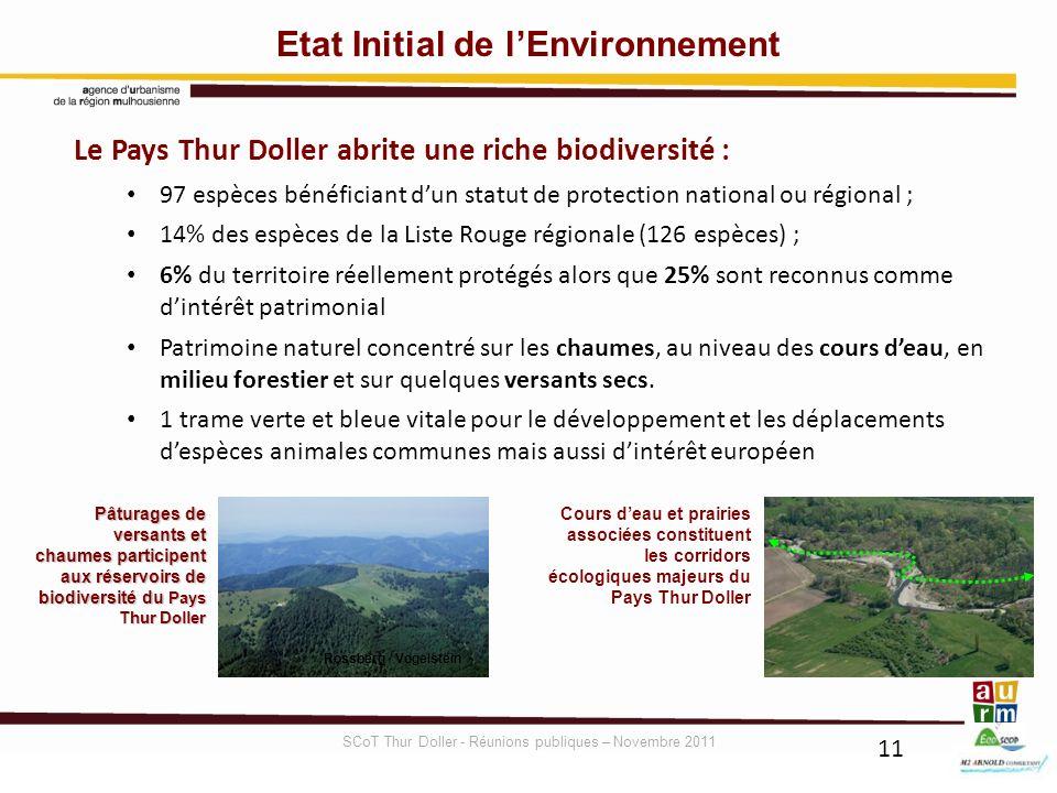 11 Etat Initial de lEnvironnement Le Pays Thur Doller abrite une riche biodiversité : 97 espèces bénéficiant dun statut de protection national ou régi