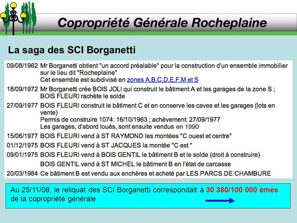 La saga des SCI Borganetti Au 25/11/08, le reliquat des SCI Borganetti correspondait à 30 380/100 000 èmes de la copropriété générale