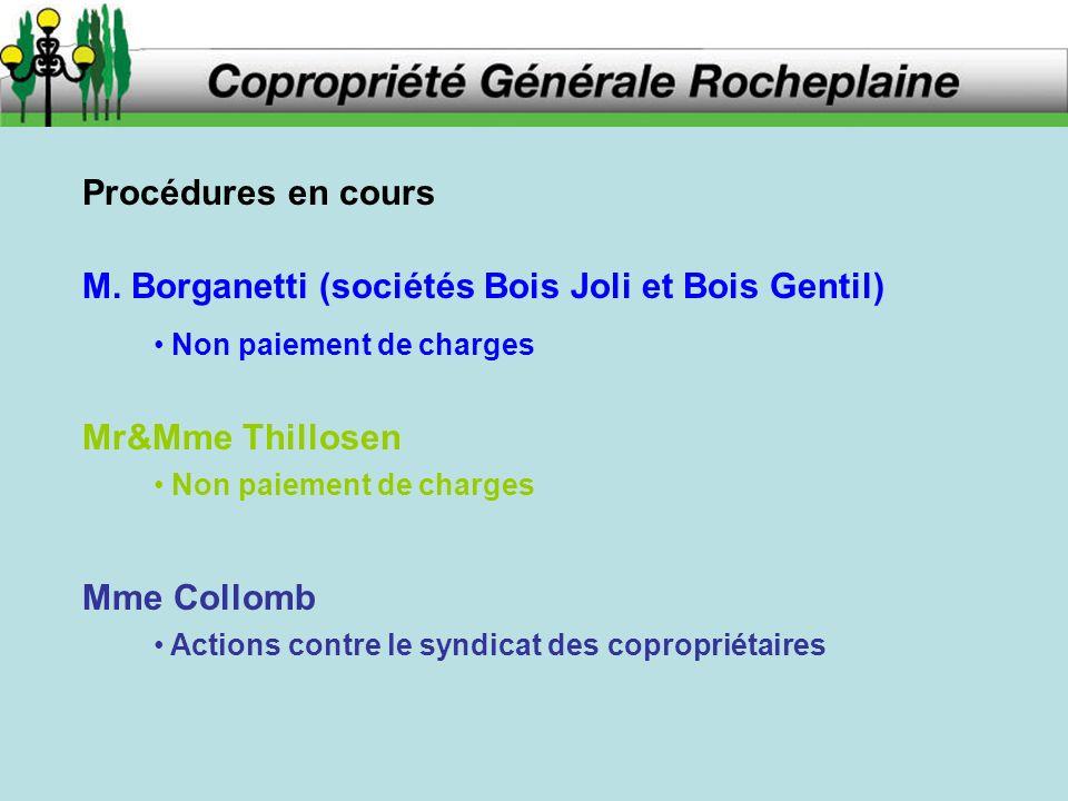 Procédures en cours M. Borganetti (sociétés Bois Joli et Bois Gentil) Mr&Mme Thillosen Mme Collomb Non paiement de charges Actions contre le syndicat