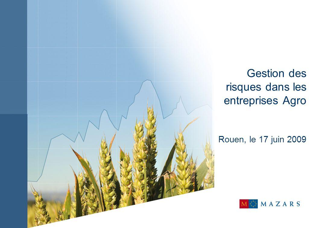 Gestion des risques dans les entreprises Agro Rouen, le 17 juin 2009