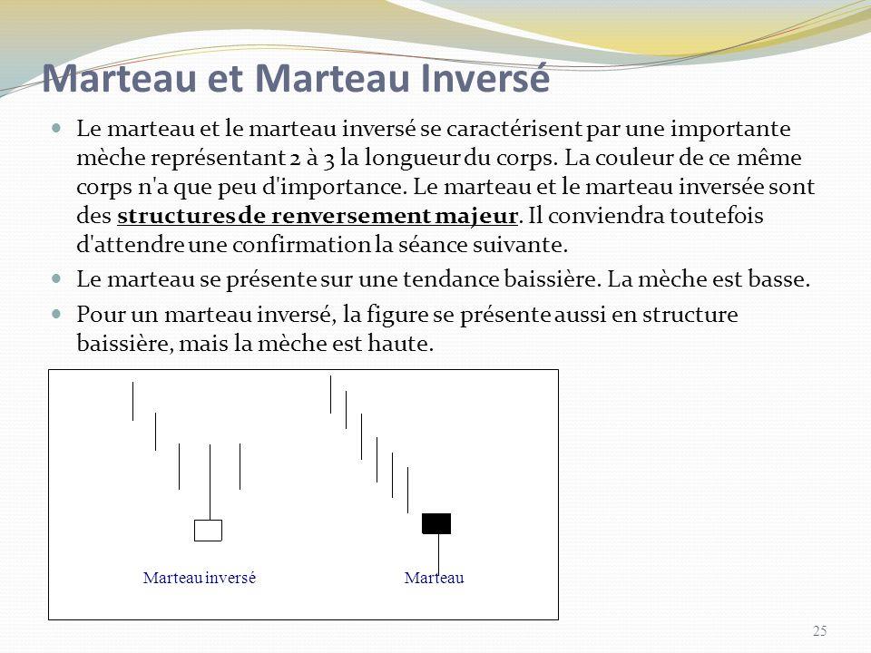 Marteau et Marteau Inversé Le marteau et le marteau inversé se caractérisent par une importante mèche représentant 2 à 3 la longueur du corps. La coul