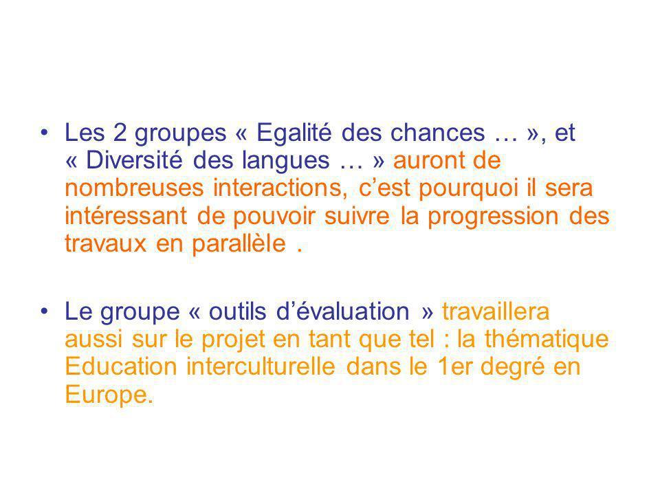 Les 2 groupes « Egalité des chances … », et « Diversité des langues … » auront de nombreuses interactions, cest pourquoi il sera intéressant de pouvoi