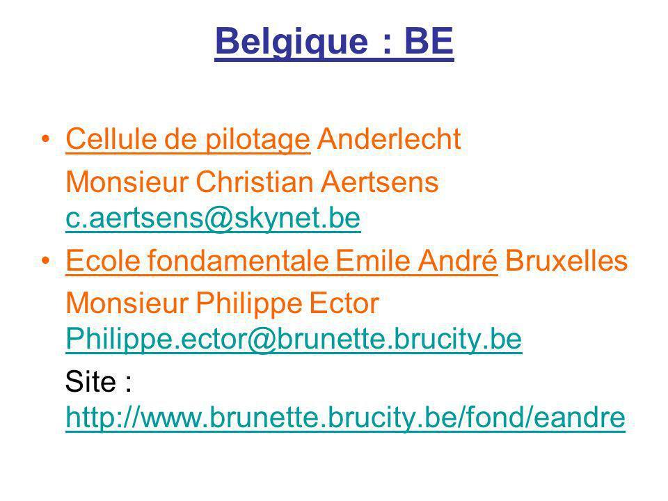 Belgique : BE Cellule de pilotage Anderlecht Monsieur Christian Aertsens c.aertsens@skynet.be c.aertsens@skynet.be Ecole fondamentale Emile André Brux