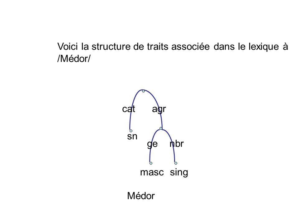 catagr sn mascsing genbr Médor Voici la structure de traits associée dans le lexique à /Médor/