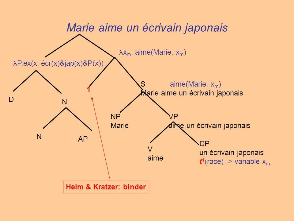 Marie aime un écrivain japonais N AP N D P.ex(x, écr(x)&jap(x)&P(x)) V aime VP aime un écrivain japonais NP Marie S aime(Marie, x m ) Marie aime un éc