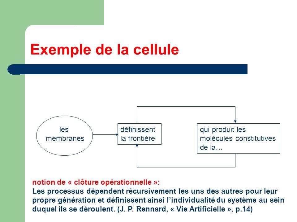 Exemple de la cellule les membranes définissent la frontière qui produit les molécules constitutives de la… notion de « clôture opérationnelle »: Les processus dépendent récursivement les uns des autres pour leur propre génération et définissent ainsi lindividualité du système au sein duquel ils se déroulent.