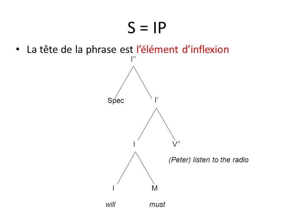 S = IP La tête de la phrase est lélément dinflexion I I I MI V Spec willmust (Peter) listen to the radio