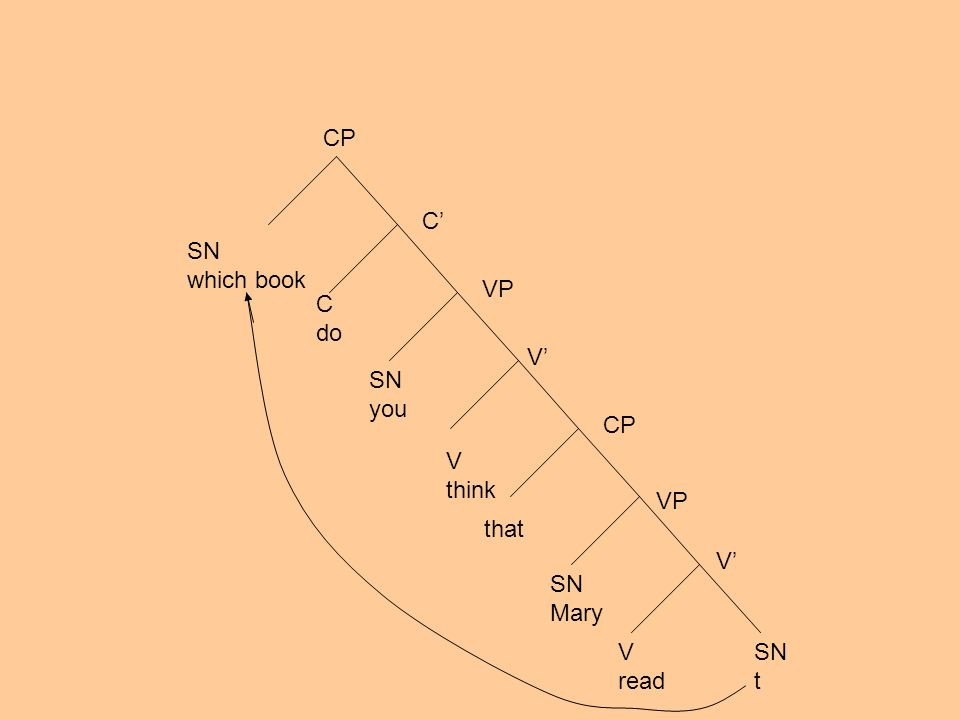 SN which book CP C C do SN you V think that SN Mary V read SN t VP CP V V VP