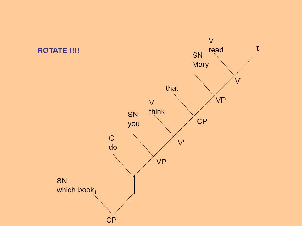 SN which book 1 CP C do SN you V think that SN Mary V read VP CP V V VP t ROTATE !!!!