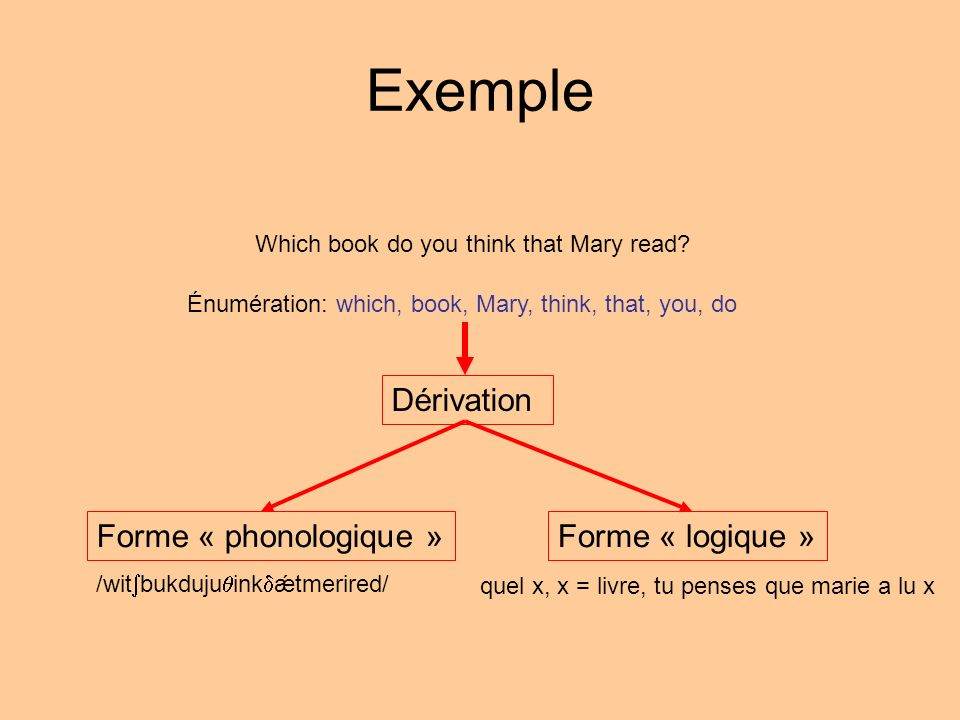 Which book do you think that Mary read? Énumération: which, book, Mary, think, that, you, do Dérivation Forme « phonologique »Forme « logique » /wit b