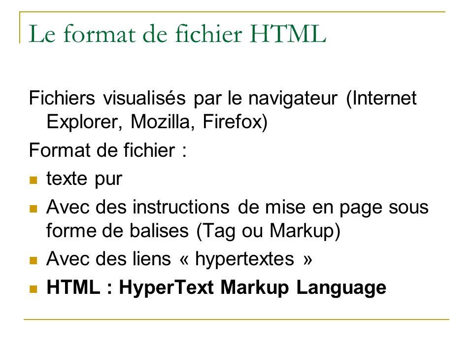 Le format de fichier HTML Fichiers visualisés par le navigateur (Internet Explorer, Mozilla, Firefox) Format de fichier : texte pur Avec des instructi