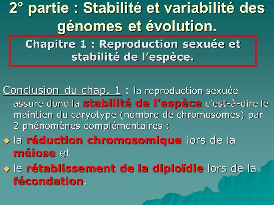 2° partie : Stabilité et variabilité des génomes et évolution. Conclusion du chap. 1 : la reproduction sexuée assure donc la stabilité de lespèce c'es