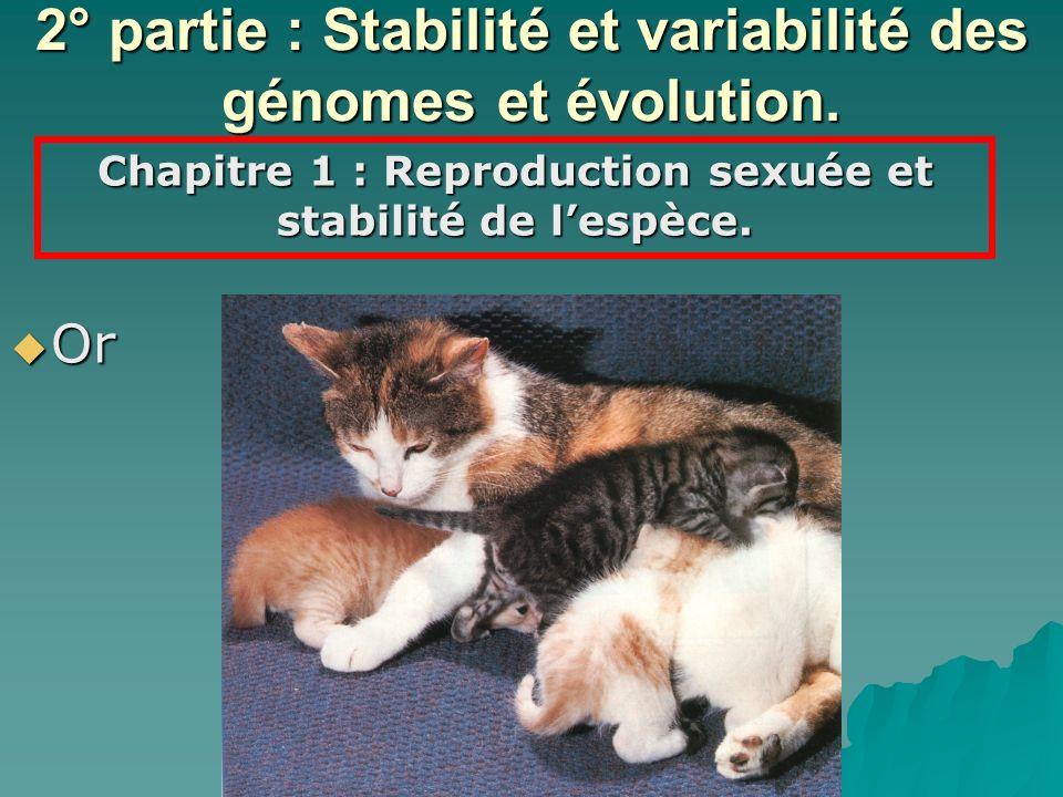 Or Or 2° partie : Stabilité et variabilité des génomes et évolution. Chapitre 1 : Reproduction sexuée et stabilité de lespèce.