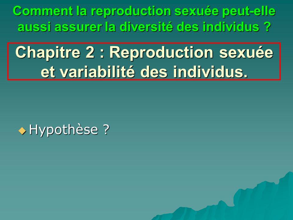 Chapitre 2 : Reproduction sexuée et variabilité des individus. Hypothèse ? Hypothèse ? Comment la reproduction sexuée peut-elle aussi assurer la diver