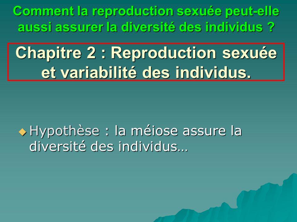 Chapitre 2 : Reproduction sexuée et variabilité des individus. Hypothèse : la méiose assure la diversité des individus… Hypothèse : la méiose assure l