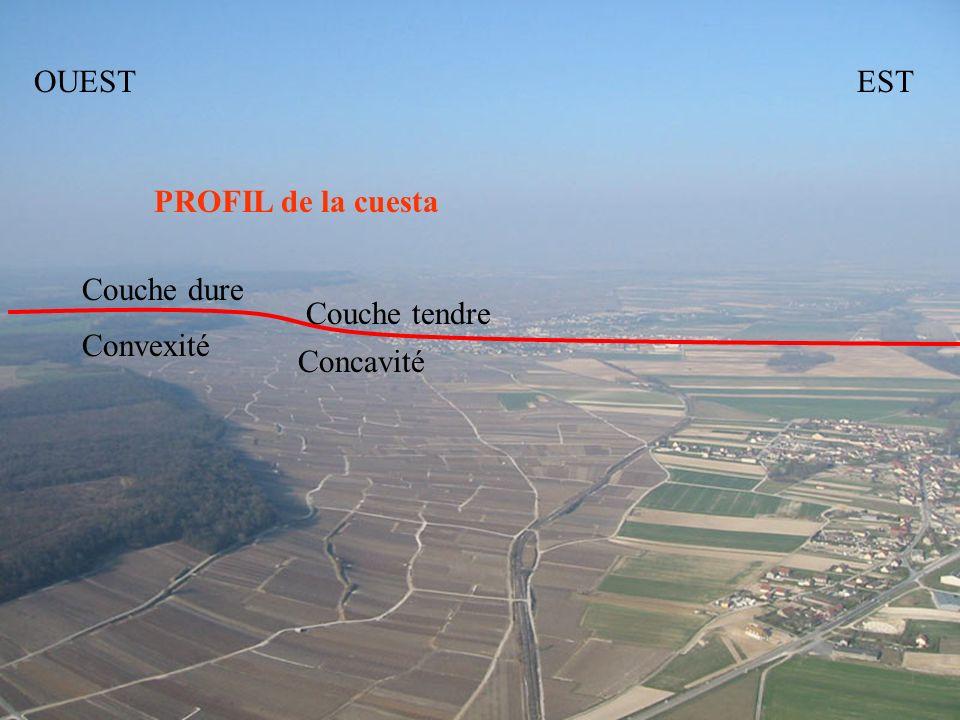 OUEST EST PROFIL de la cuesta Couche dure Couche tendre Convexité Concavité