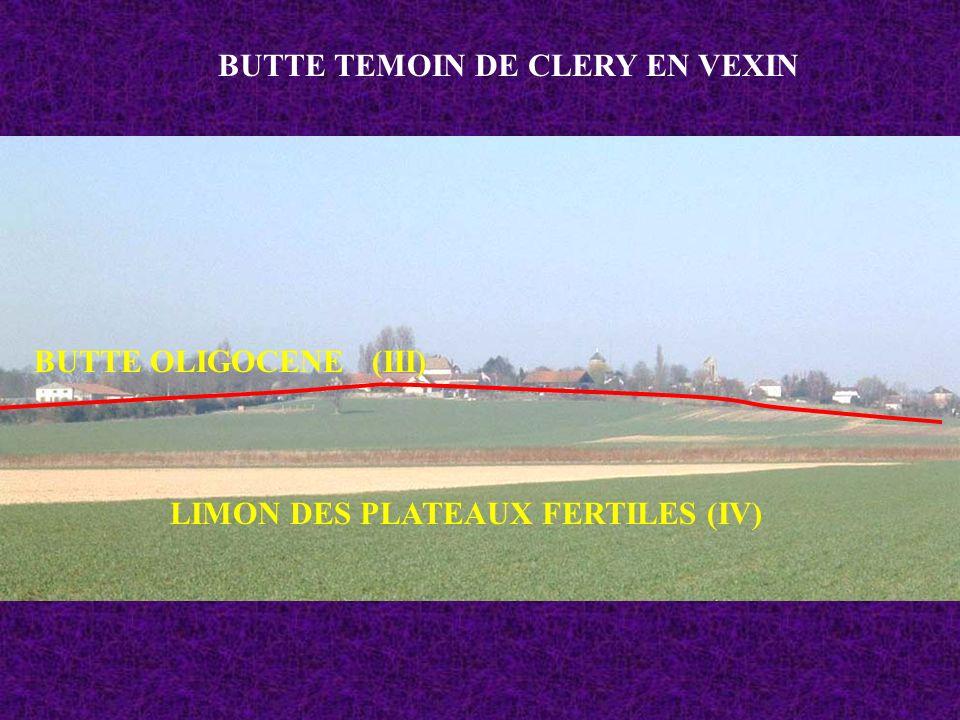 BUTTE TEMOIN DE CLERY EN VEXIN LIMON DES PLATEAUX FERTILES (IV) BUTTE OLIGOCENE (III)