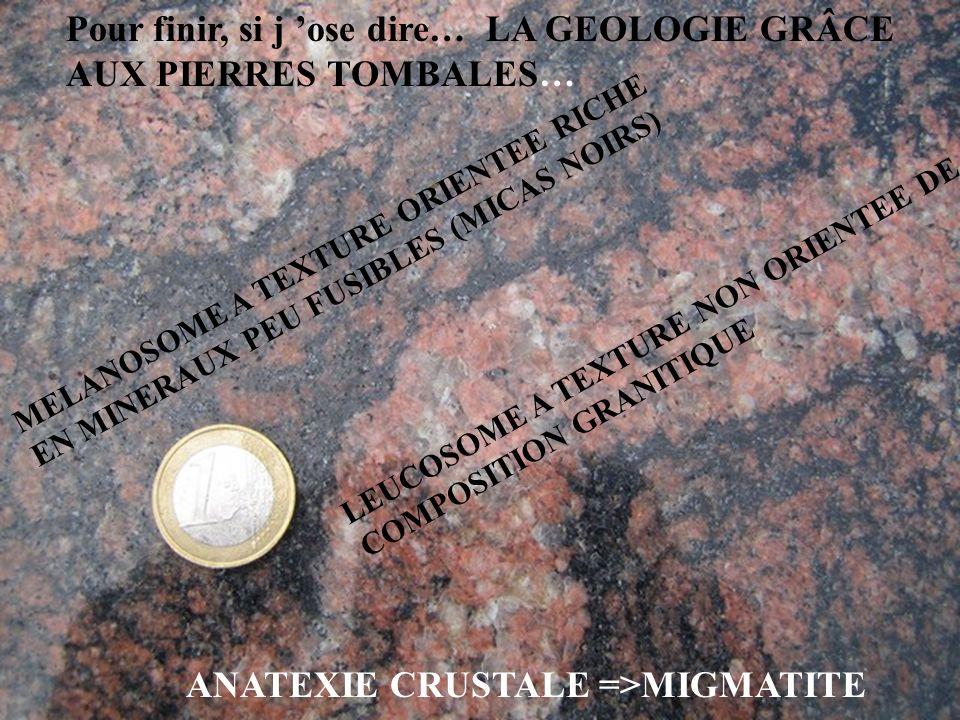 Pour finir, si j ose dire… LA GEOLOGIE GRÂCE AUX PIERRES TOMBALES… ANATEXIE CRUSTALE =>MIGMATITE MELANOSOME A TEXTURE ORIENTEE RICHE EN MINERAUX PEU F