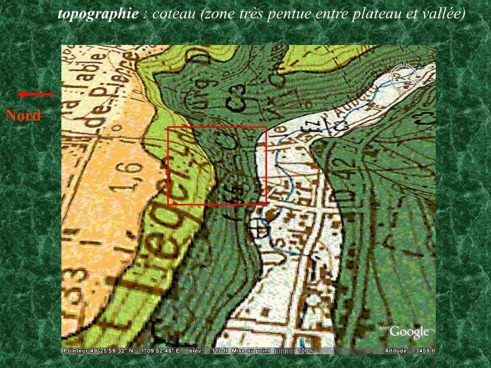 géologie : essentiellement craie C3 turonien C4 sénonien (crétacé sup.) + argiles à silex (en orange) et limons des plateaux (en jaune clair) issus du bord du plateau orientation : vallée est-ouest ( exposition SUD) climat : forte influence océanique mais microclimat, vu l exposition, influences méridionales (chaleur, sécheresse
