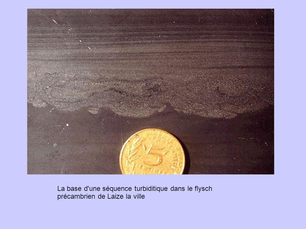 La base d une séquence turbiditique dans le flysch précambrien de Laize la ville