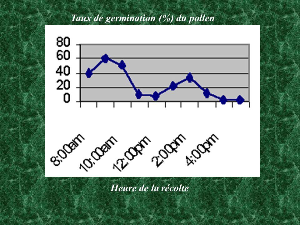 Taux de germination (%) du pollen Heure de la récolte