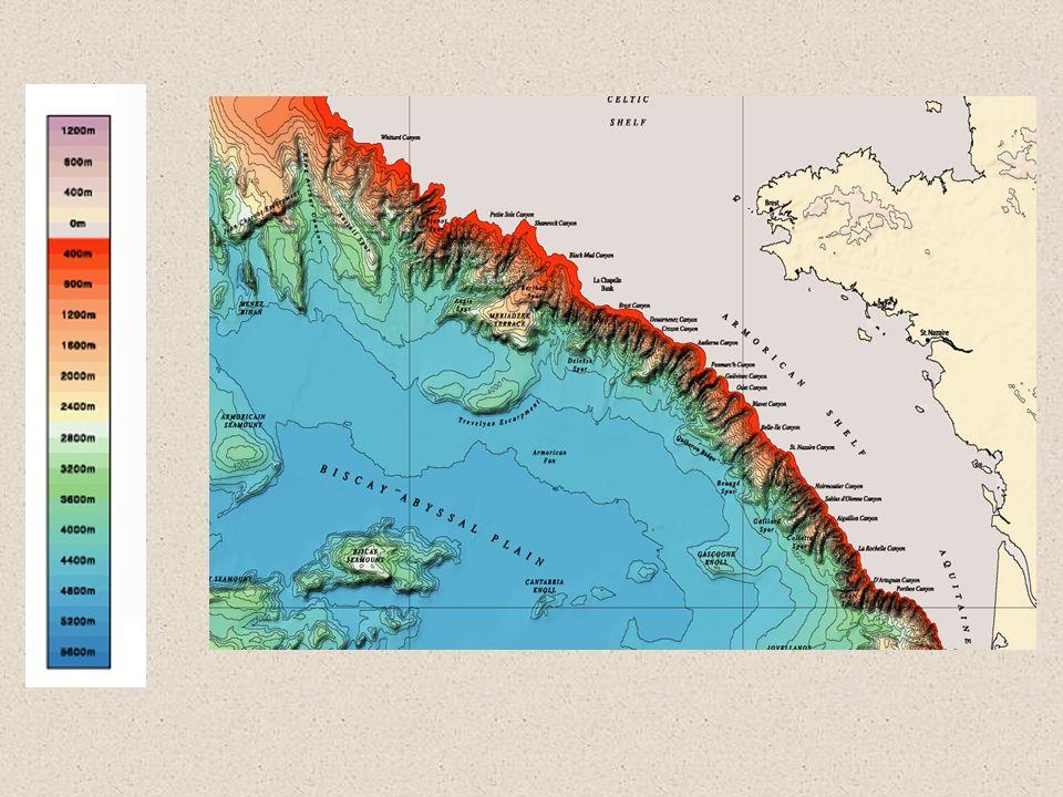 L émersion du plateau continental lors de la dernière glaciation (Würm) maximum glaciaire vers -20 000ans