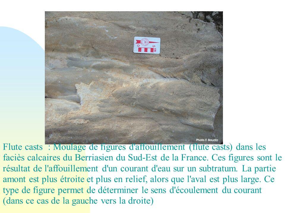 Flute casts : Moulage de figures d'affouillement (flute casts) dans les faciès calcaires du Berriasien du Sud-Est de la France. Ces figures sont le ré
