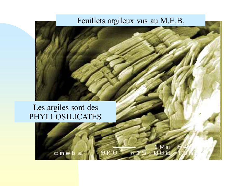 Feuillets argileux vus au M.E.B. Les argiles sont des PHYLLOSILICATES