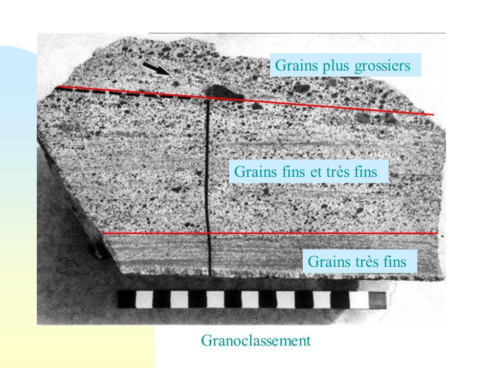 Grains très fins Grains fins et très fins Grains plus grossiers Granoclassement