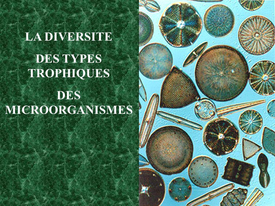 LA DIVERSITE DES TYPES TROPHIQUES DES MICROORGANISMES