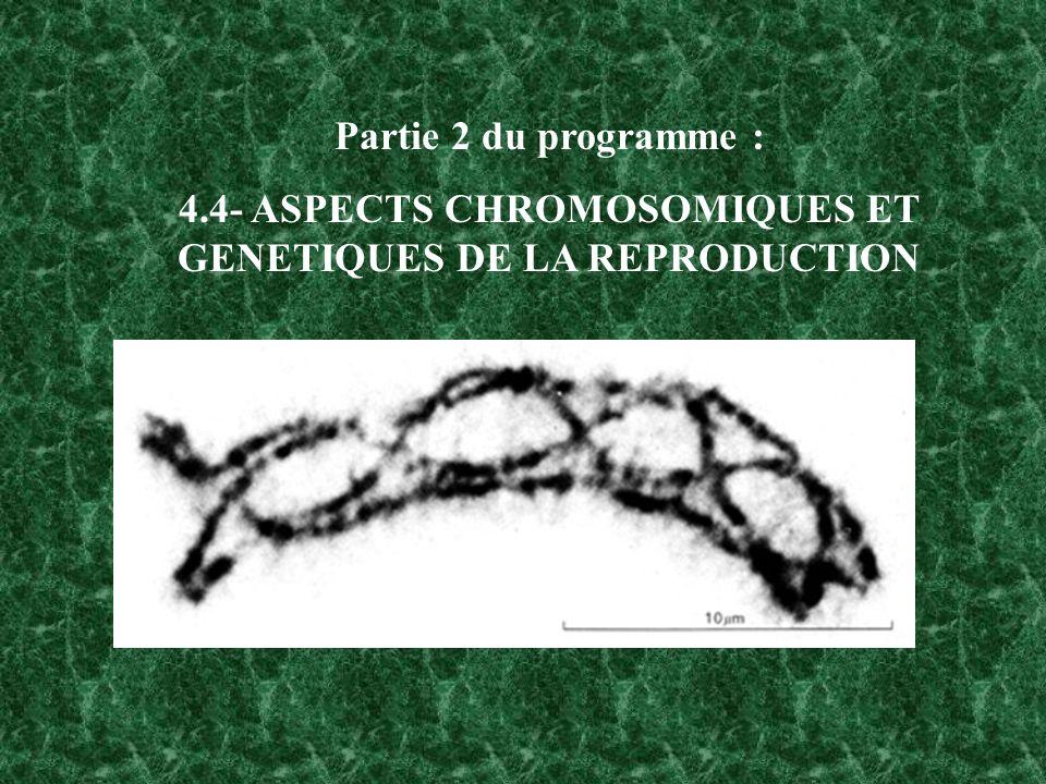 Partie 2 du programme : 4.4- ASPECTS CHROMOSOMIQUES ET GENETIQUES DE LA REPRODUCTION