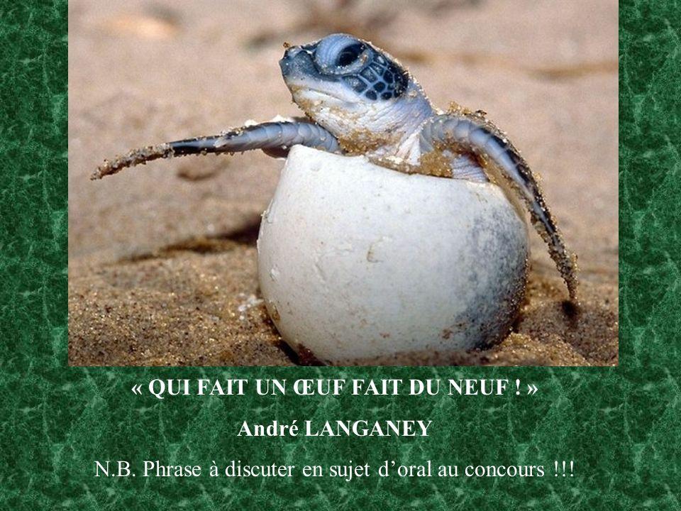 « QUI FAIT UN ŒUF FAIT DU NEUF .» André LANGANEY N.B.