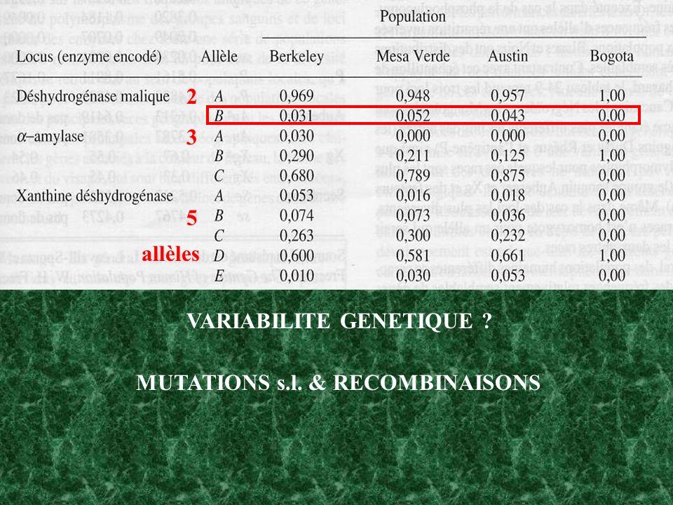 235235 allèles VARIABILITE GENETIQUE ? MUTATIONS s.l. & RECOMBINAISONS