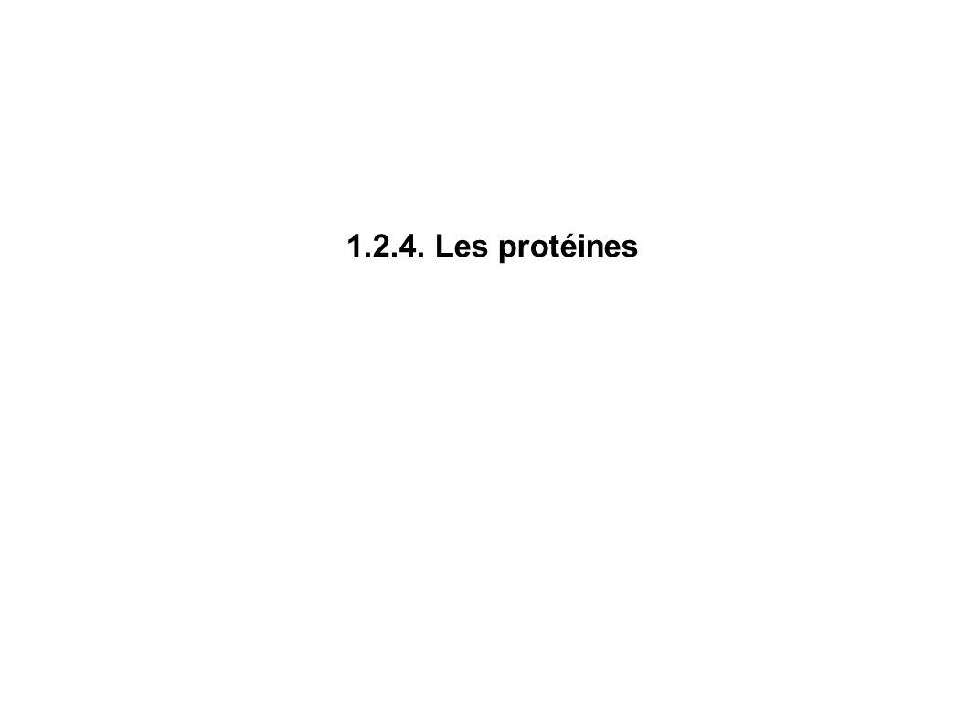 1.2.4. Les protéines