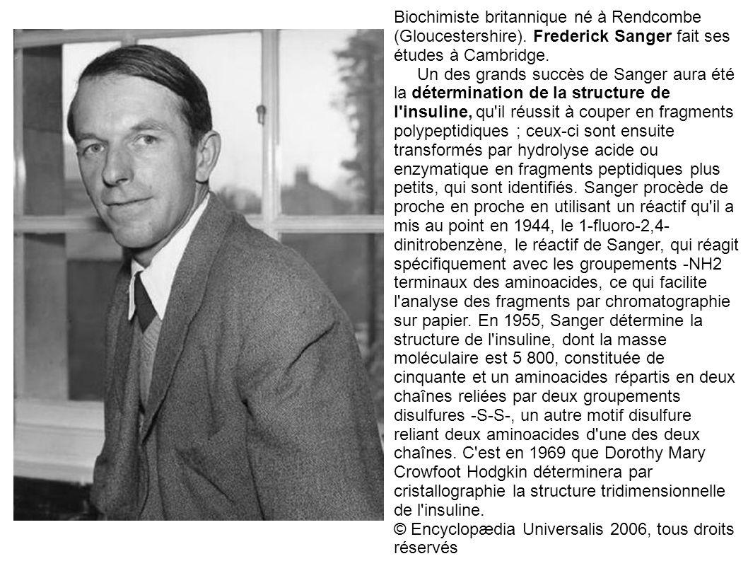 Biochimiste britannique né à Rendcombe (Gloucestershire). Frederick Sanger fait ses études à Cambridge. Un des grands succès de Sanger aura été la dét