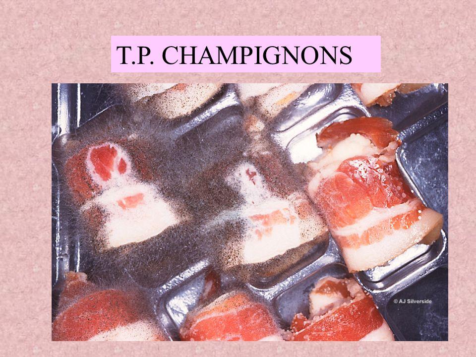 T.P. CHAMPIGNONS
