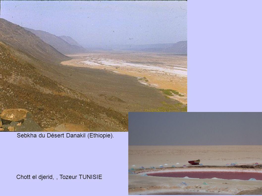 Sebkha du Désert Danakil (Ethiopie). Chott el djerid,, Tozeur TUNISIE
