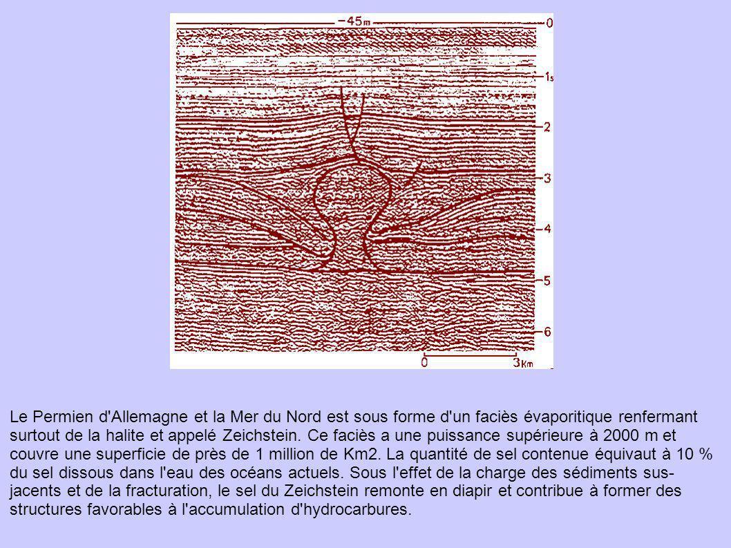 Le Permien d Allemagne et la Mer du Nord est sous forme d un faciès évaporitique renfermant surtout de la halite et appelé Zeichstein.