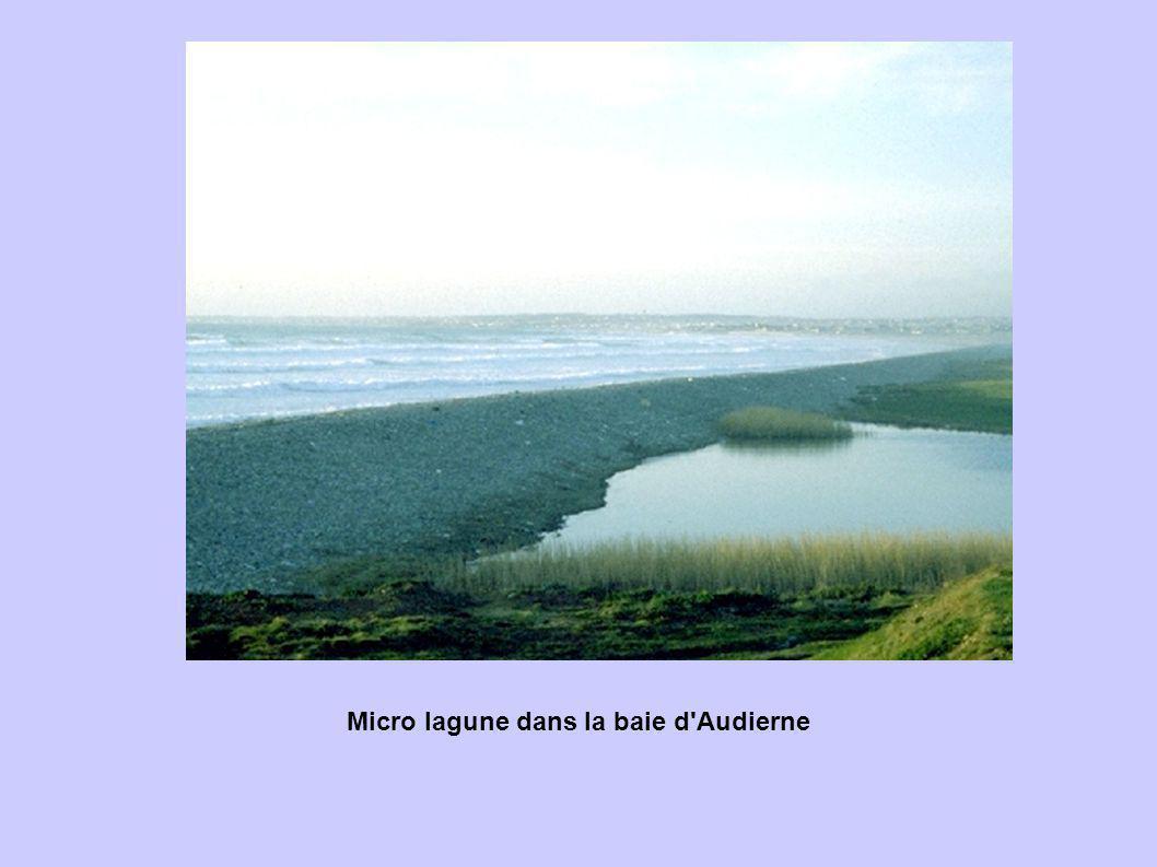 Micro lagune dans la baie d'Audierne