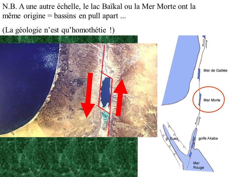 N.B. A une autre échelle, le lac Baïkal ou la Mer Morte ont la même origine = bassins en pull apart... (La géologie nest quhomothétie !)