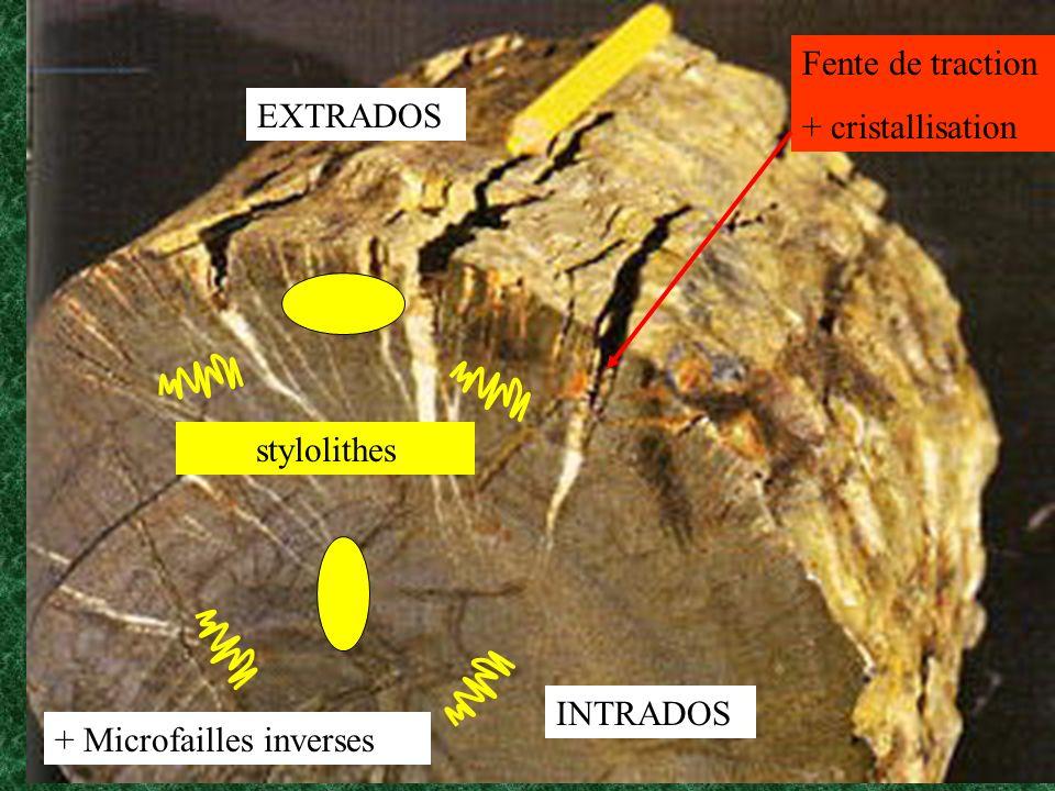 Fente de traction + cristallisation EXTRADOS INTRADOS stylolithes + Microfailles inverses